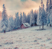 Colorful winter sunrise in the Carpathian mountains Royalty Free Stock Images