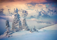 Colorful winter sunrise in foggy mountains Royalty Free Stock Photography