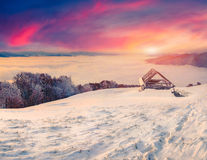 Colorful winter sunrise in fogyy mountains. Stock Image
