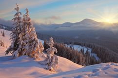 Colorful winter sunrise Stock Photos