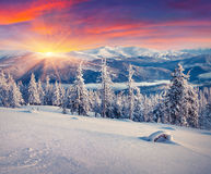 Colorful winter sunrise in the mountains. Instagram toning Stock Photos