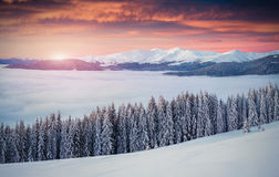 Colorful winter sunrise in the mountains. Mountain valley Pozhar Stock Image