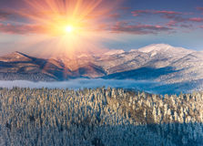 Colorful winter sunrise in the mountains. View of the fog and snow tops. Royalty Free Stock Photos