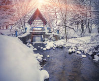 Colorful winter sunset in the city park. Stock Photos