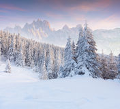 Colorful winter sunset in foggy mountains. Royalty Free Stock Photo