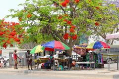 Colorful women street market Flame trees, Africa Royalty Free Stock Photo