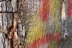 Colorful Wood Texture. A colorful wood texture with red and yellow paint marks stock photography