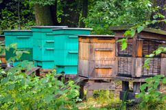Beekeeping in the forest. Colorful wooden beehives in the bosom of nature royalty free stock image