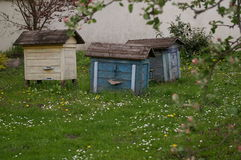 Colorful wooden beehives. Stock Images