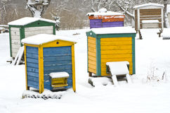 Colorful wooden beehives in  winter garden on snow Royalty Free Stock Photography