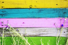 Colorful wooden fence with grass and flowers Royalty Free Stock Photography