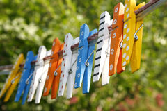 Colorful wooden pegs Royalty Free Stock Photo