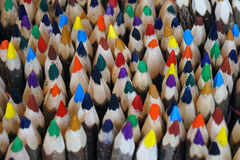Colorful wooden pencils. Stock Image