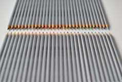 Colorful wooden pencils lying in a row  on white background Stock Photography