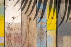 Colorful wooden surface with palm leaf shadow. Painted timber texture. Natural boho background. Colorful wooden background with palm leaf shadow. Painted timber royalty free stock image