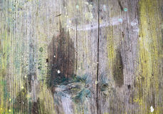 Colorful Wooden Texture Stock Photo