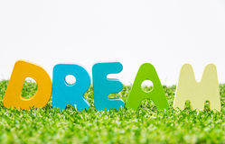 Colorful wooden word DREAM on green grass with white background and selective focus Royalty Free Stock Photo