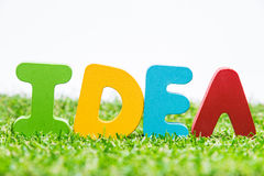 Colorful wooden word IDEA on fresh green grass with white backgr Stock Images