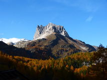 Colorful woods and Mount Thabor France Europe. The colorful woods frame Mount Thabor at fall France Europe Stock Image