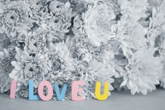 Colorful Word ` I love U` on black and white flowers. Blurred background Stock Photography