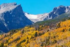 Autumn in Colorado. Colorful yellow autumn in Colorado, United States. Fall season royalty free stock image