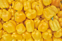 Colorful yellow bell peppers for sale Royalty Free Stock Image