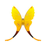 Colorful yellow butterfly with abstract decorative pattern summer free fly present silhouette and beauty nature spring Stock Images