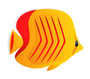 Colorful yellow fish with red stripes Stock Photo
