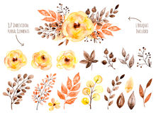Colorful Yellow Floral Collection With Leaves And Flowers,drawing Watercolor. Royalty Free Stock Images