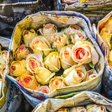 Colorful yellow roses  at Royalty Free Stock Image