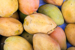 Colorful yellow-is of tropical mangoes in South America -Arequipa, Peru Stock Image