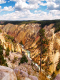 Colorful Yellowstone Canyon with river flowing. Vertical image of river running through the Yellowstone canyon during a beautiful summer day surrounded by pine Royalty Free Stock Photos