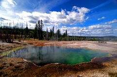 Colorful Yellowstone Hot Spring Royalty Free Stock Images