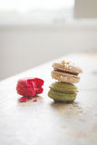 Colorful yummy macaroons in brightly backlit setting with clear Royalty Free Stock Photo