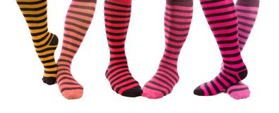 Colorful Zebra Foots Royalty Free Stock Image