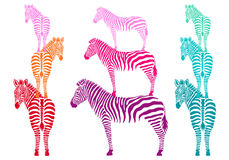 Colorful zebras, vector set Royalty Free Stock Photo
