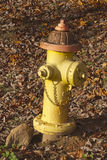 ColorfulFire Hydrant Stock Image