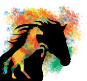 ColorfulHorse Royalty Free Stock Photos