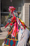 Colorfuli costumes and masks Stock Photography