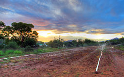 Colorfull南部非洲的干旱台地高原日落 免版税库存照片