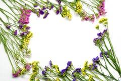 Colorfull在白色背景的野花框架 平的位置,顶视图 库存图片