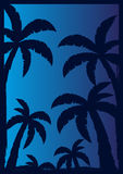 Colorfull棕榈有黑暗的背景 也corel凹道例证向量 免版税图库摄影