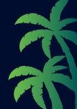 Colorfull棕榈有黑暗的背景 也corel凹道例证向量 图库摄影