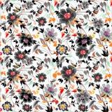 Colorfull花卉样式 库存图片