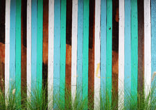 Colorfull art wall. With grass Stock Photography