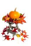 Colorfull autumn Stock Photos