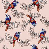 Colorfull bird background 1. Colorfull bird on branch seamless background Royalty Free Stock Images