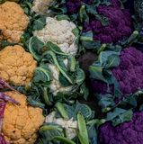 Colorfull blomkål på stadmarknaden, London royaltyfri bild