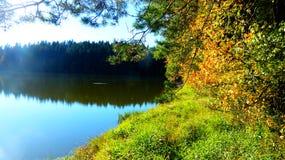 Autumn lake. Colorfull bush on lake shore Royalty Free Stock Photos