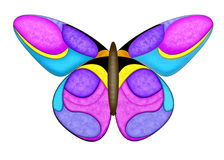 Colorfull Butterfly. This is a drawn butterfly with white clipping path Vector Illustration